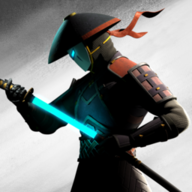 Shadow Fight 3D
